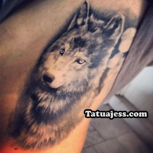 Tatuajes De Lobos Ideas Y Fotografias